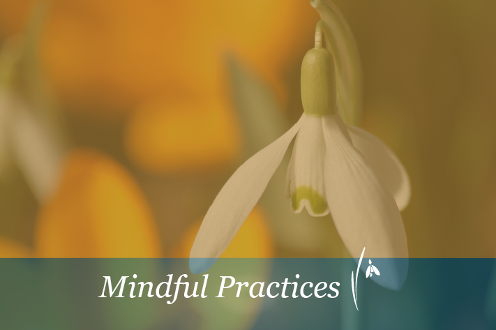 Session 12: A Mindful Life